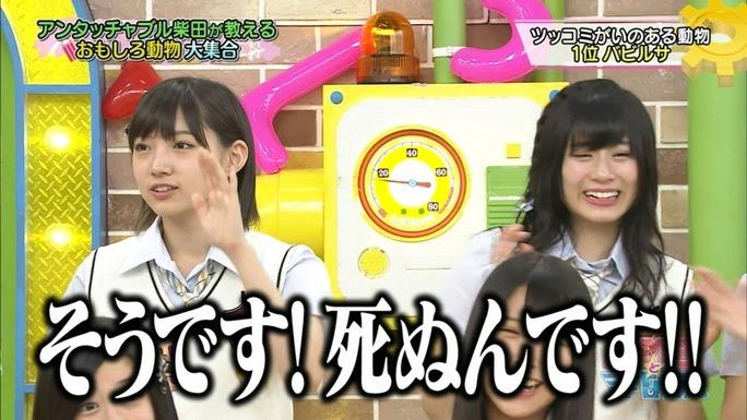 【NMB48】NMBとまなぶくんキャプ。アンタ・柴田さんを迎え動物をまなぶ。さすがです柴田さんwwww