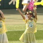 【川上千尋/谷川愛梨/山本彩加】TORACO DAYの甲子園、ちっひー・あいり・あーやんがラッキー7でグランドに出てきたw