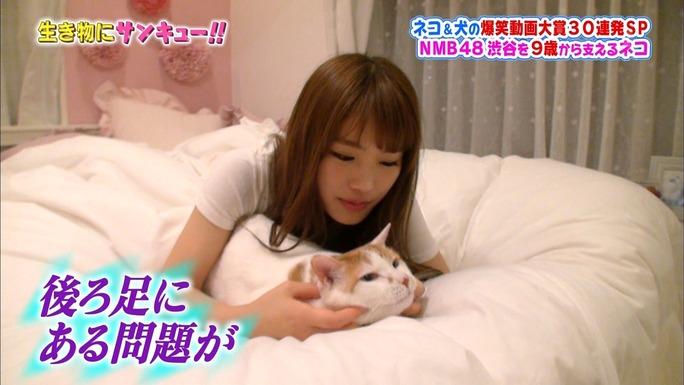 【渋谷凪咲】なぎさ出演、生き物にサンキュー!!キャプ画像と動画など。メイさんの真実。