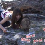 【渋谷凪咲】なぎさ、11/8の「生き物にサンキュー」オーストラリアロケに登場。いつの間にw