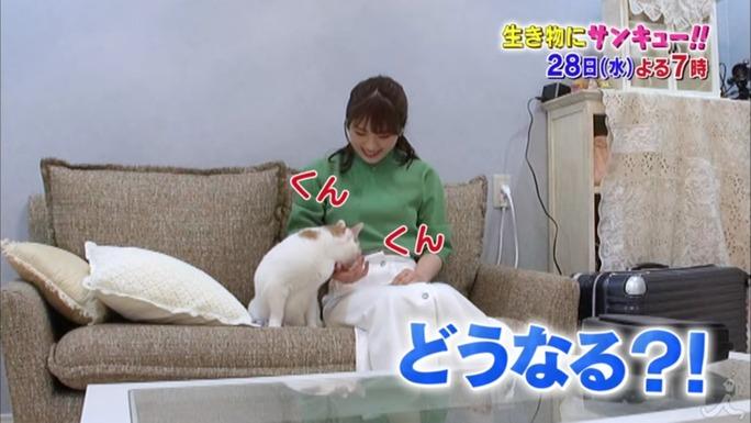 【渋谷凪咲】なぎさが3/28の「トコトン掘り下げ隊!生き物にサンキュー!!」に出演の模様。