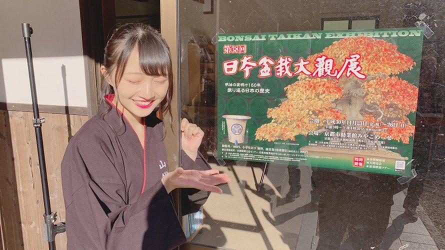 【山本彩加】京都・みやこめっせで開催の第38回日本盆栽大観展にあーやんが作品を出展