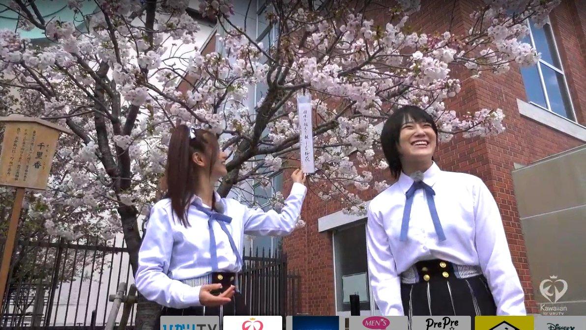 【谷川愛梨/城恵理子】ジョー・あいり出演『ぽくぽく百景もぐもぐ旅』の画像。造幣局の桜の通り抜けへ。