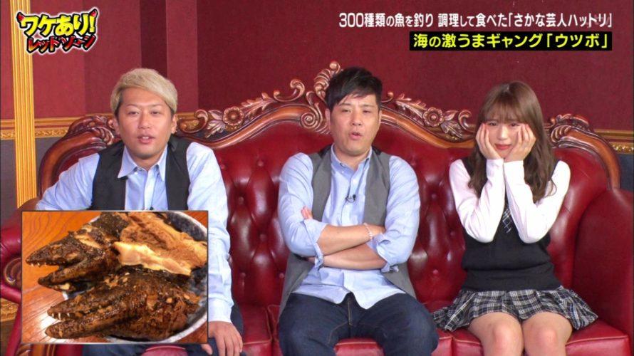 【渋谷凪咲】なぎさ出演 11月1日に放送された「ワケあり!レッドゾーン」の画像。激うま珍魚。