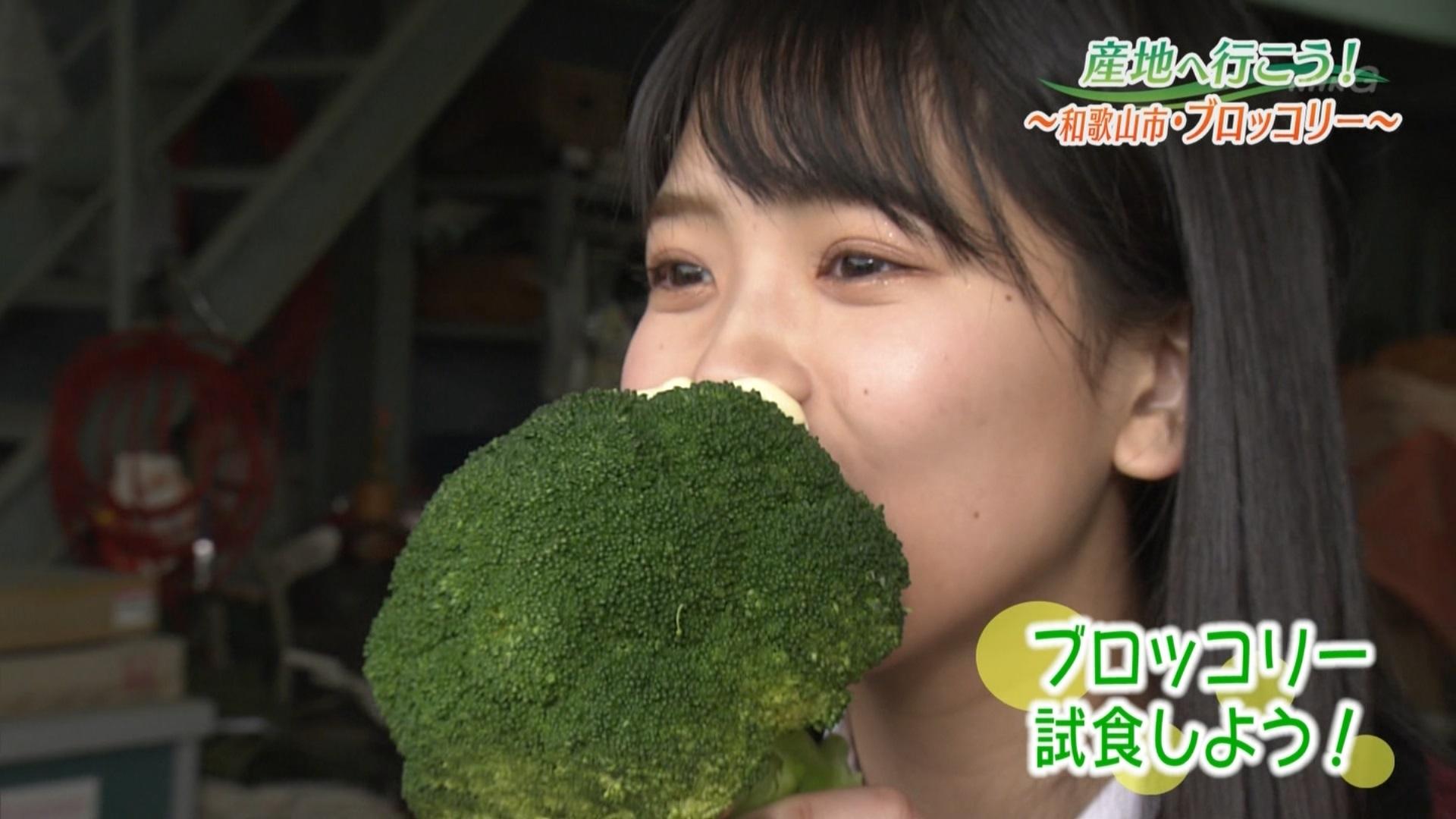 【安田桃寧】 ももねが出演した2/18放送「ぐるっと関西おひるまえ・産地へ行こう!」の画像